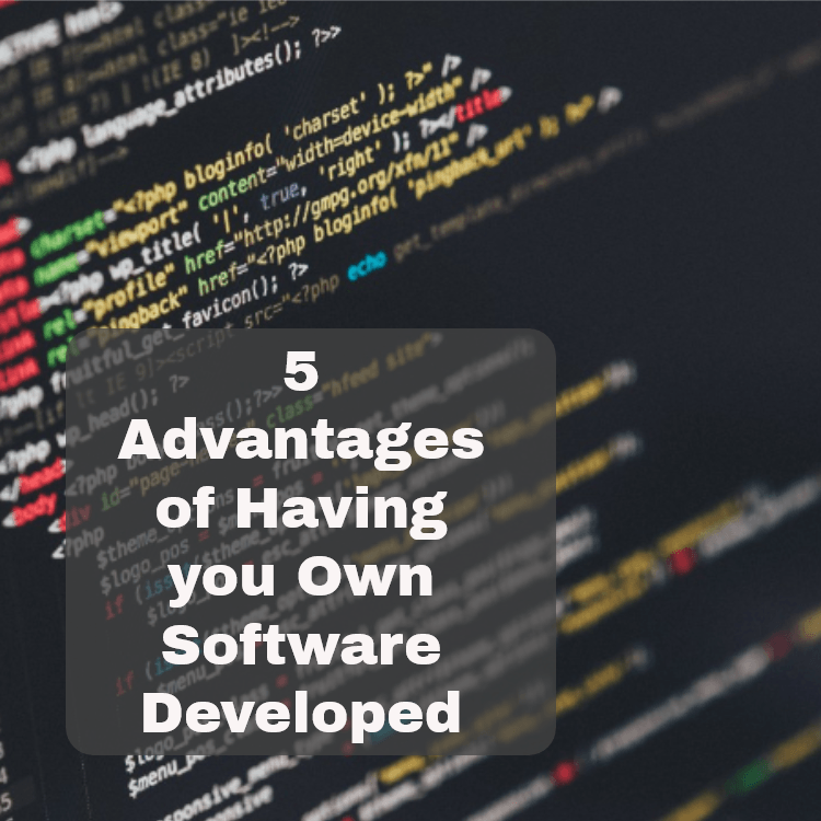 Software Development and Bespoke Software